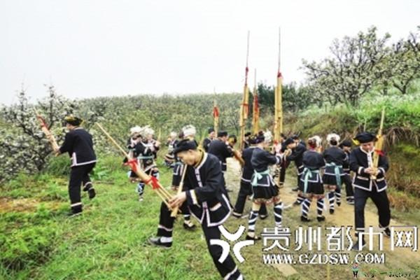 锦屏敦寨举办首届梨花节