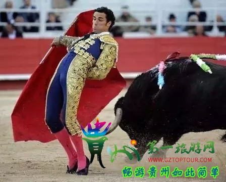 """播州区洪关苗族乡要举办""""超级牛王""""斗牛比赛了!200张门票免费送~"""