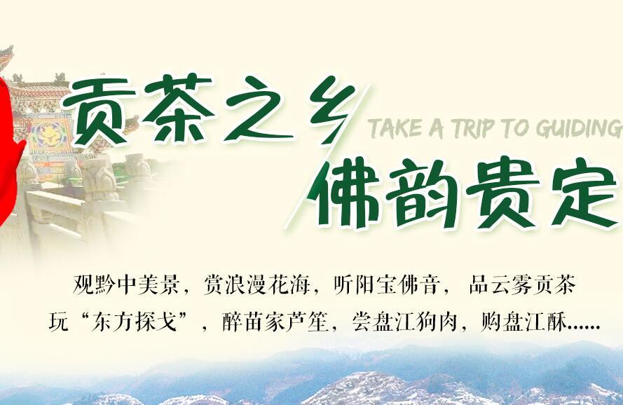 【专题】贡茶之乡•佛韵贵定