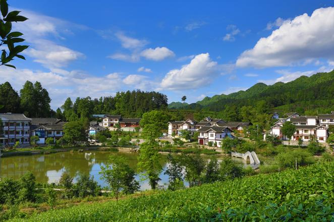 冬季出游就去贵州的这些乡村,好玩又温暖(遵义篇)